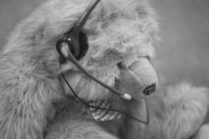 bear-headset